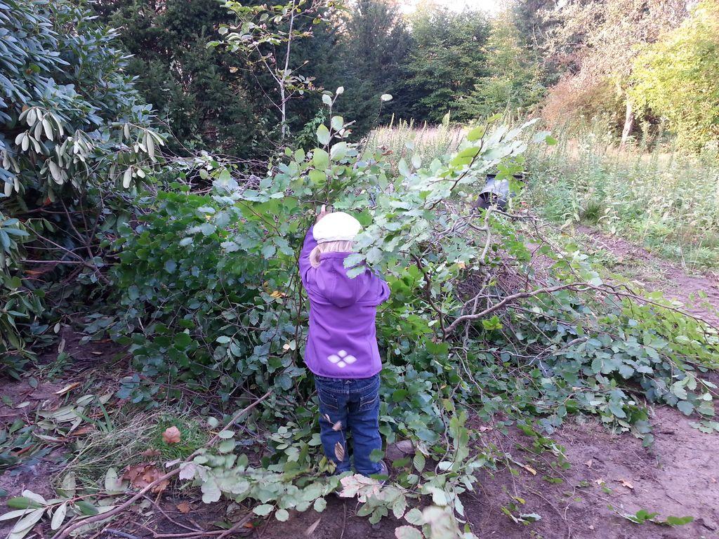 Anna Lena räumt die Zweige weg